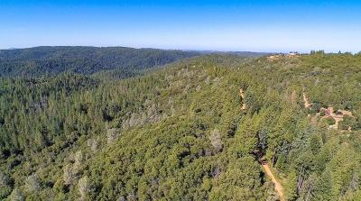 Amador County Commercial Lots & Land For Sale: 16490 Ponderosa Way