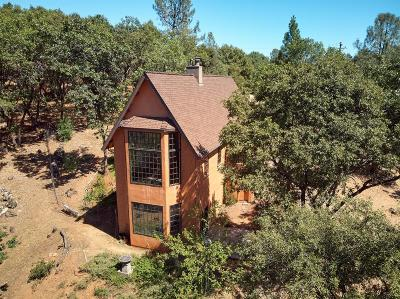 Sonora Single Family Home For Sale: 22662 Meadow Lane