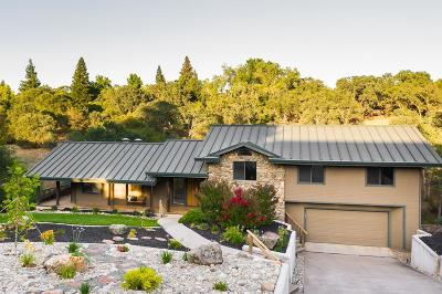 Folsom Single Family Home For Sale: 130 Prospector Court