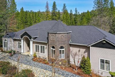 Grass Valley CA Single Family Home For Sale: $745,000