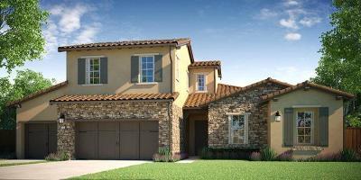 Manteca Single Family Home For Sale: 1687 Bella Lago Way