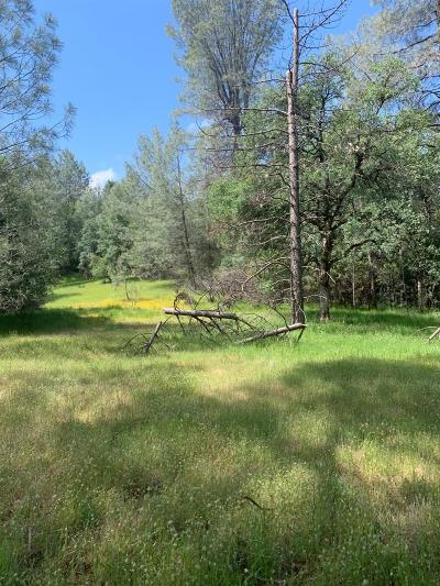 Placerville Residential Lots & Land For Sale: 9040 Orval Beckett
