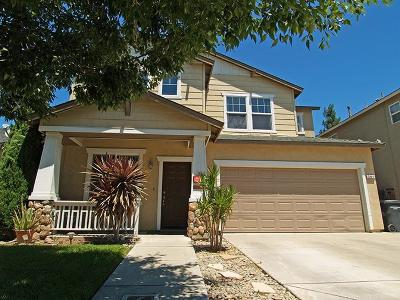 Turlock Single Family Home For Sale: 281 Greenhouse Way