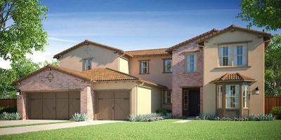 Manteca Single Family Home For Sale: 1675 Bella Lago Way