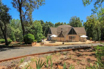 Garden Valley Single Family Home For Sale: 3710 Old Greenwood Road