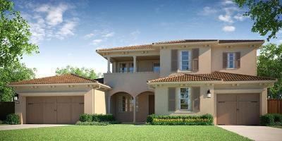 Manteca Single Family Home For Sale: 3732 Castellina Way