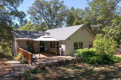 Grass Valley Single Family Home For Sale: 16055 Mount Olive Road