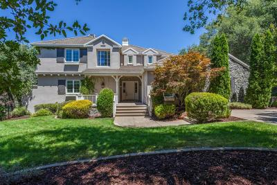 El Dorado Hills Single Family Home For Sale: 401 Borra Court