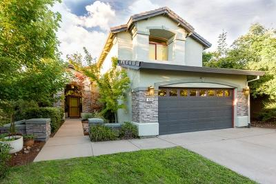 Folsom Single Family Home For Sale: 623 Hillswick Circle