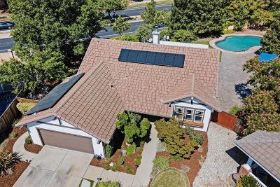 Antioch Single Family Home For Sale: 2313 Antler Court