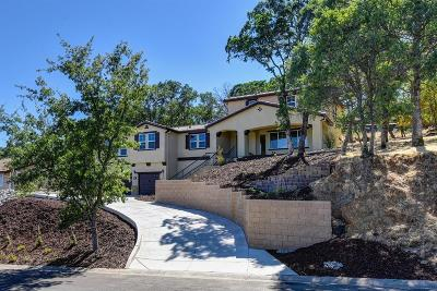 El Dorado Hills Single Family Home For Sale: 3580 Ridgeview Drive