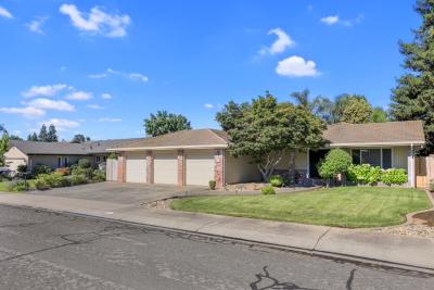 Lodi Single Family Home For Sale: 851 Kramer Drive