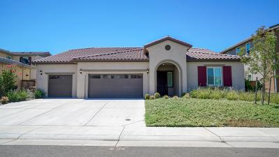 Elk Grove Single Family Home For Sale: 8444 Bolcetto Circle