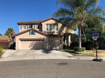 Elk Grove Single Family Home For Sale: 8696 Banton Circle