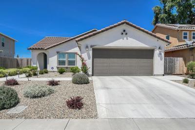 Stockton Single Family Home For Sale: 4284 Red Oak Lane