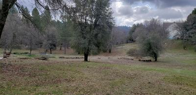Nevada City Residential Lots & Land For Sale: 16703 Eden Ranch Road