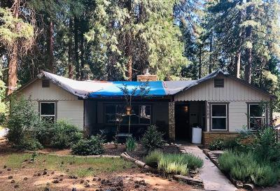 Pollock Pines Single Family Home For Sale: 5684 Pony Express Trail