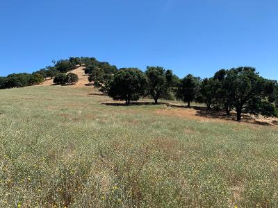Amador County Commercial Lots & Land For Sale: 13101 Jackson Gate Road
