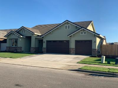 Newman Single Family Home For Sale: 337 Red Lion Way