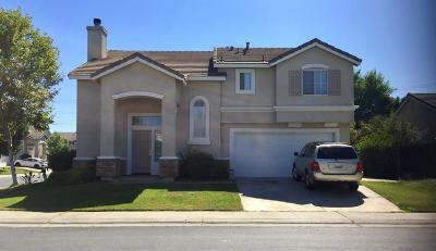 Elk Grove Single Family Home For Sale: 4119 Woodwillow Lane