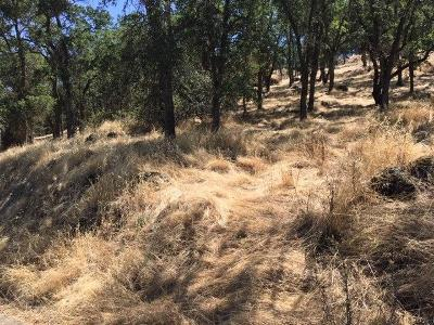 Valley Springs Residential Lots & Land For Sale: 3265 Botfuher Road