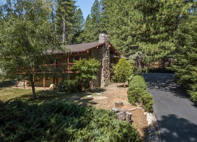 Foresthill Single Family Home For Sale: 20617 Birchwood Drive
