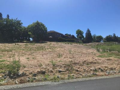 Valley Springs Residential Lots & Land For Sale: 219 La Contenta Drive
