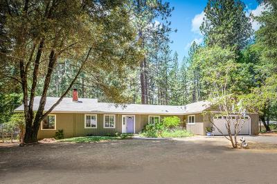 Grass Valley Single Family Home For Sale: 14012 Linden Road