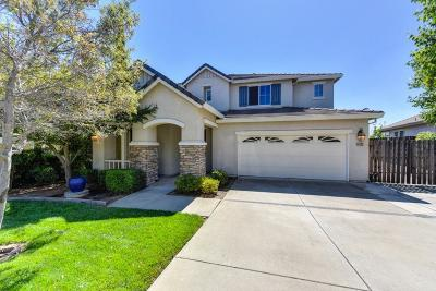 El Dorado County Single Family Home For Sale: 4162 Monte Verde Drive