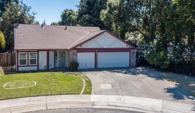 Sacramento Single Family Home For Sale: 27 Tinneil Court