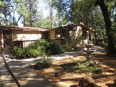 Grass Valley Single Family Home For Sale: 13916 Raccoon Mountain Road