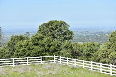 Lincoln CA Residential Lots & Land For Sale: $860,000