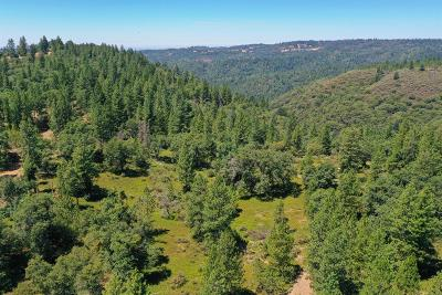 Amador County Commercial Lots & Land For Sale: 17050 Alicia Drive