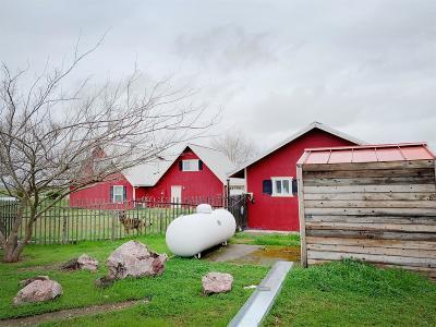 Galt Single Family Home For Sale: 12673 McKenzie Road