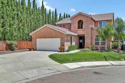 Tracy Single Family Home For Sale: 392 Tennis Court