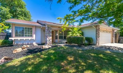 Placer County Single Family Home For Sale: 1317 Foxhollow Way