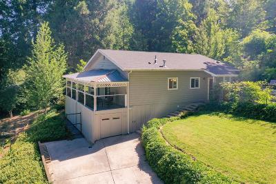 Nevada City Single Family Home For Sale: 156 Park Avenue