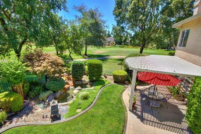 Placer County Single Family Home For Sale: 1616 West Krpan Drive
