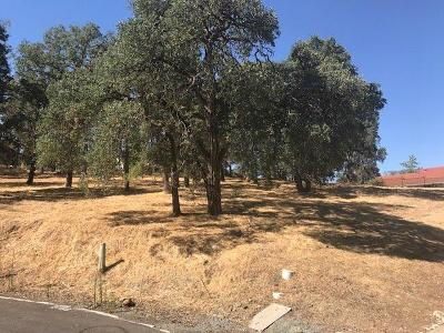 Valley Springs Residential Lots & Land For Sale: 2756 Teal Court