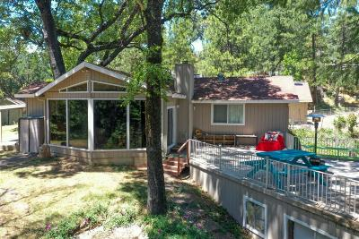 Placerville Single Family Home For Sale: 3203 Pioneer Hill Road
