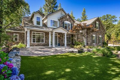 Foresthill Single Family Home For Sale: 6716 Potter Lane