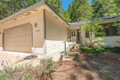 Pine Grove Single Family Home For Sale: 20529 Lookout Road
