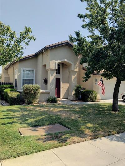 Manteca Single Family Home For Sale: 1733 Sierra Brook Court