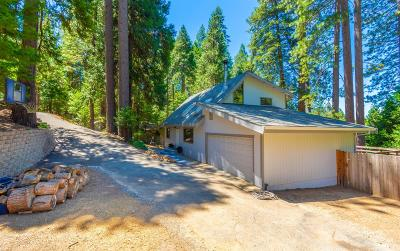 Pollock Pines Single Family Home For Sale: 4976 Golden Street