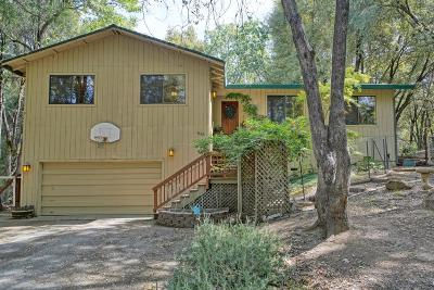 Placerville Single Family Home For Sale: 1698 Country Lane