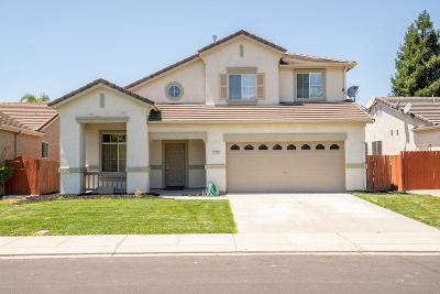 Manteca Single Family Home For Sale: 1175 Empire Avenue