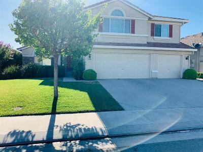 Stockton Single Family Home For Sale: 9759 Priscilla Lane