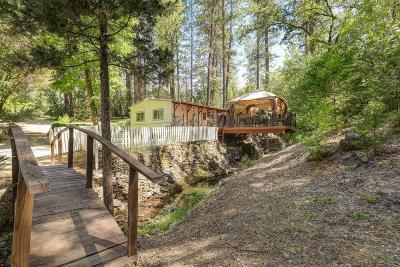 Nevada City Single Family Home For Sale: 18561 State Highway 49