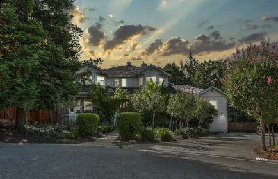 El Dorado Hills Single Family Home For Sale: 1113 Arbor Place