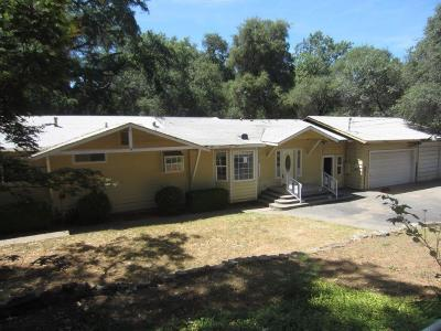 Penn Valley Single Family Home For Sale: 18694 Siesta Drive